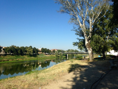 Paths along the Arno in the Cascine Park