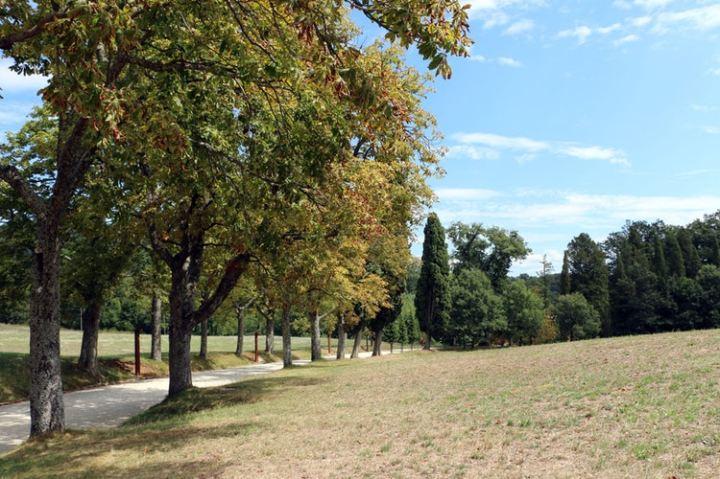 pratolino-park-road.jpg